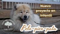 PELO-PICO- PATA PROIEKTUA HEMEN DAGO!!